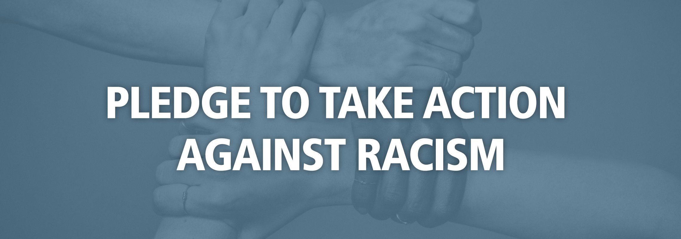 Pledge to Take Action Against Racism
